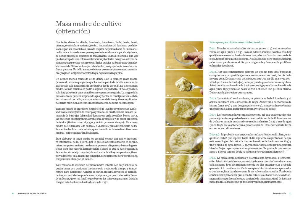 100 recetas de pan de pueblo: Ideas y trucos para hacer en ...
