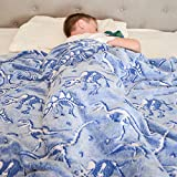 Dinosaur Blanket Glow in The Dark Luminous Dino
