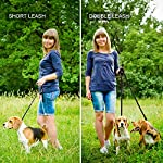 oneisall Hands Free Dog Leash,Multifunctional Dog Training Leads,8ft Nylon Double Leash for Puppy,Small & Large Dogs 13