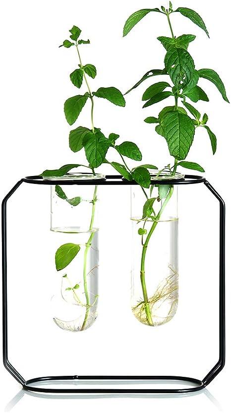 Morden Metal Stand Test Tube Vase Plant Flower Pot Hydroponic Planter Decor