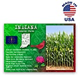 INDIANA STATE FACTS postcard set of 20 identical postcards. Post cards with IN facts and state symbols. Made in USA.