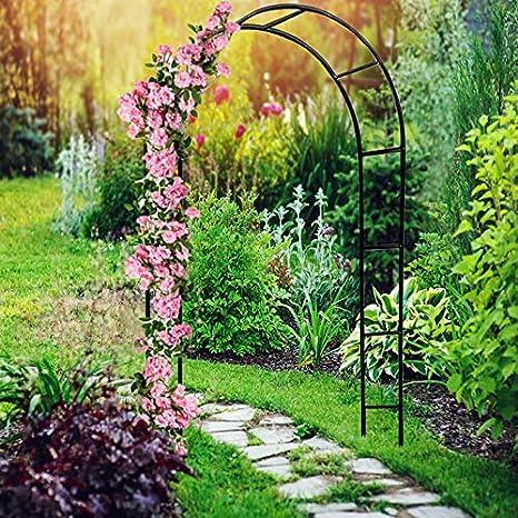 Deuba Arco Rosales y Plantas trepadoras enredadoras Metal pulverizado 240x140cm para jardín Exterior Eventos decoración: Amazon.es: Jardín