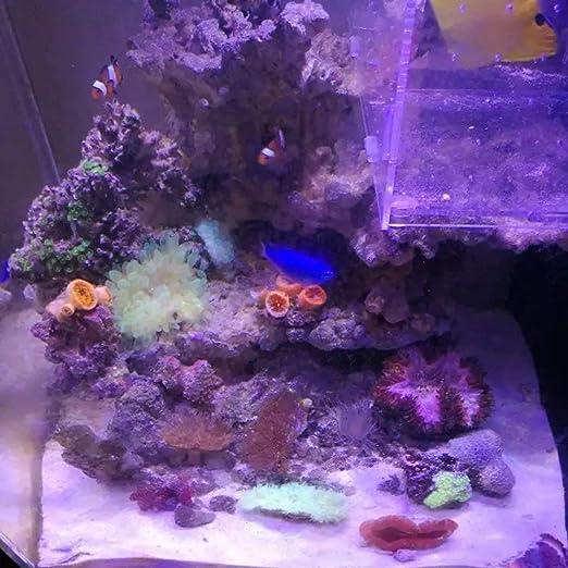 Iluminación LED tanque de peces acuario iluminación con control táctil para arrecifes de coral