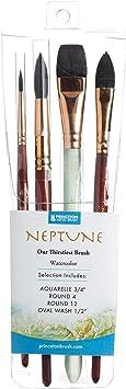 Princeton Neptune Syn Sh Essential 4pc Set