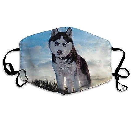 Amazon.com  Ubnz50X Husky Huskie Dogs Cotton Mouth Masks 159316279