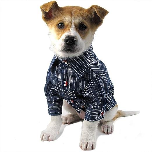 DOGCATMM Moda Camisa para Perros Vaqueros para Perros Ropa para Perros Ropa para Perros Xs-3Xl Pequeño Y Mediano Ropa para Mascotas Monos para Perros Suministros Chihuahua: Amazon.es: Productos para mascotas