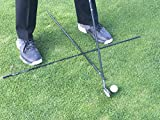 Frogger Golf 40'' Alignment Stick Training Aid