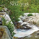 New York Wild & Scenic 2021 12 x 12 Inch Monthly Square Wall Calendar, USA United States of America Northeast State Nature