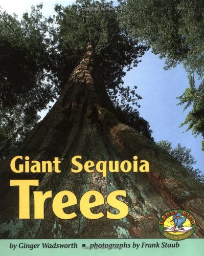Giant Sequoia Trees (Early Bird Nature Books)