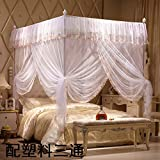 DE&QW Four corner palace mosquito net bed canopy, Open Single door Fall Stent mosquito curtain-White Queen2