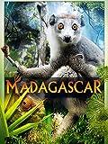 Madagascar (2D)