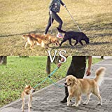 Grand Line Double Leash Dog Walker Coupler