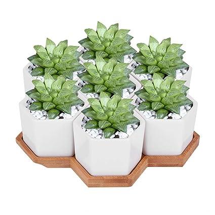 Amazon.com: 7 macetas de cerámica para macetas hexagonales ...