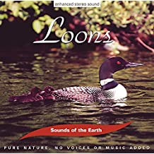 Sounds of the Earth: Loons