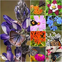 Grow a garden filled with wildflowers that will attract an array of beneficial insects. The plants included in our Bird and Butterfly Wildflower Mixture will attract butterflies, bumblebees & honey bees, ladybugs and even hummingbirds as ...