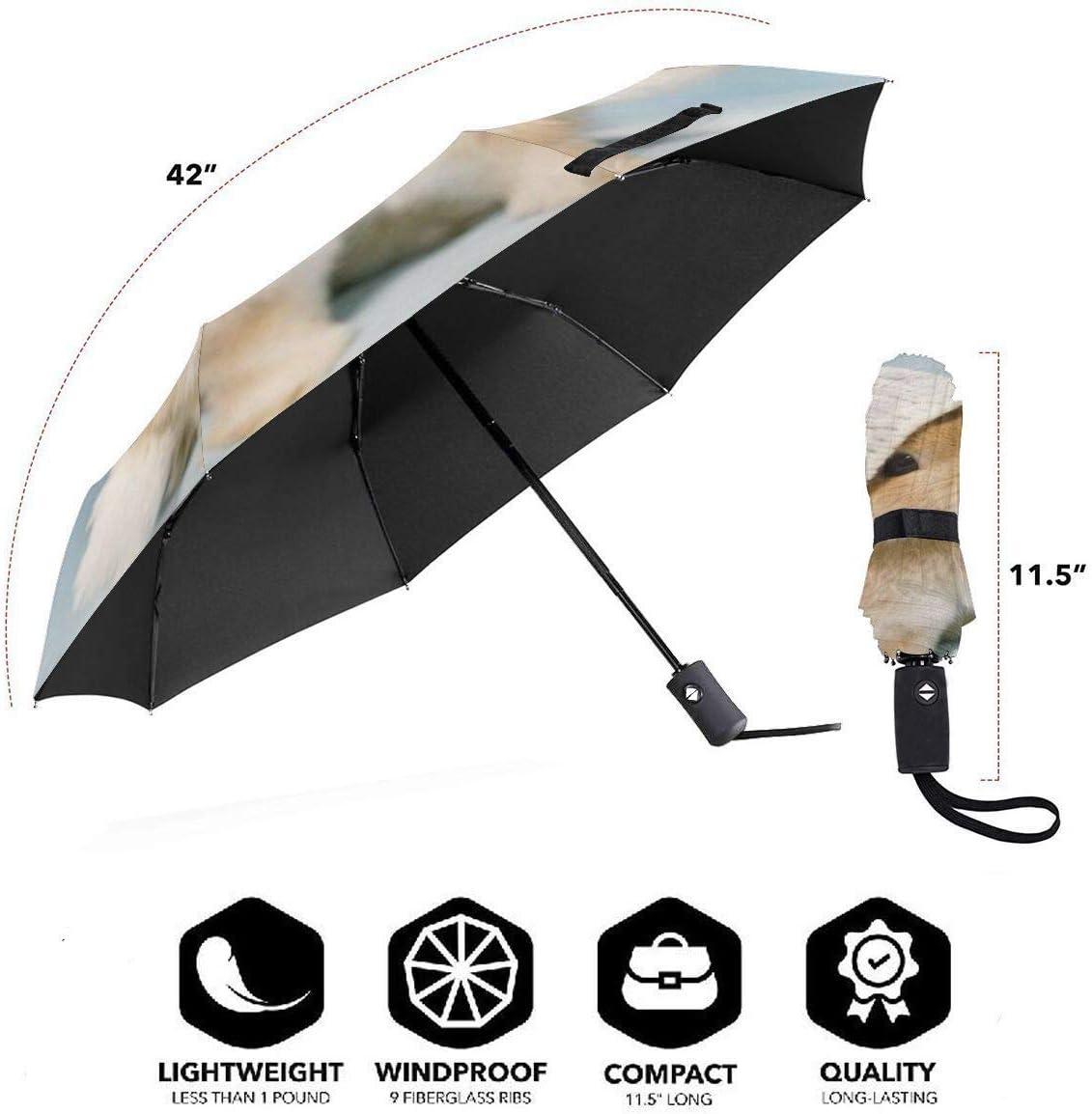 DXDXL Rabbit Automatic Tri-fold Umbrella Inside Print One Size