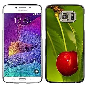 iKiki Tech / Estuche rígido - Fruit Macro Cherry Leaf - Samsung Galaxy S6 SM-G920