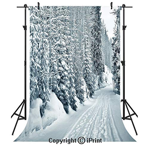 Winter Photography Backdrops,Ski Themed Snowy Road Cold Parts of The World Footprints Colorado United States Decorative,Birthday Party Seamless Photo Studio Booth Background Banner 3x5ft,