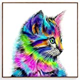 Blxecky Diamond Painting Diamond Art Paint Diamond Dots Colorful Cat