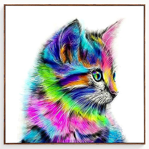 Blxecky Diamond Painting Diamond Art Paint Diamond Dots Colorful Cat by Homokea