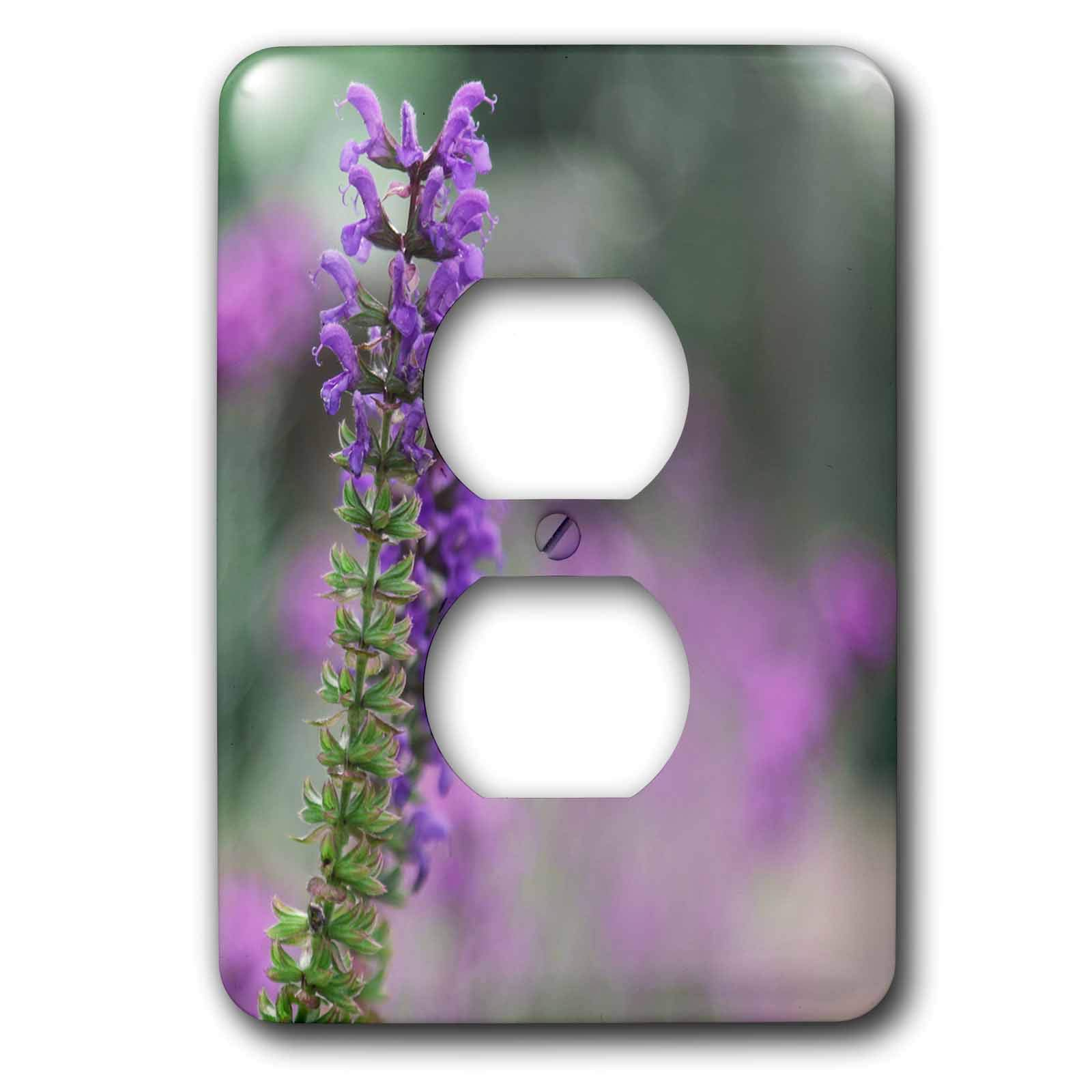 3dRose Stamp City - flowers - Photograph of purple salvia plant which is very popular with the bees. - Light Switch Covers - 2 plug outlet cover (lsp_290782_6)