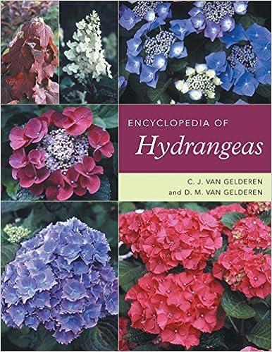 Encyclopedia Of Hydrangeas C J Van Gelderen D M Van Gelderen
