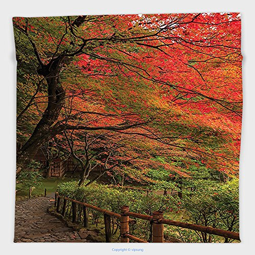 Vipsung Microfiber Ultra Soft Hand Towel-Japanese Decor Collection Lace Canadian Maple Tree With Faded Autumn Leaves Tranquil Rainy Zen Path Session Photo Red Green For Hotel Spa Beach Pool Bath (Canadian Dinosaur Coin)