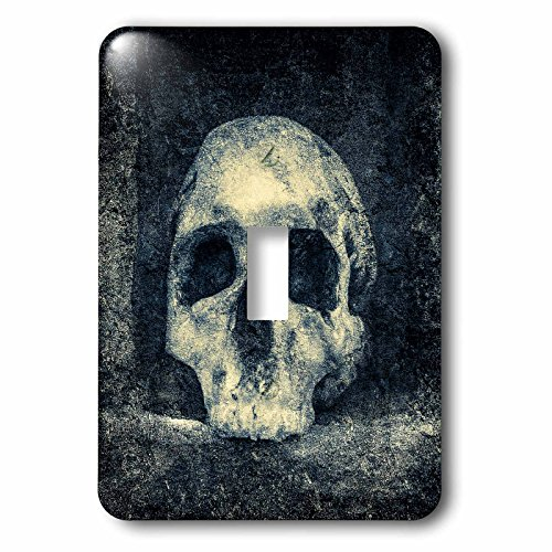 3dRose Alexis Photography - Halloween - White human skull in a dark niche of a pagan temple - Light Switch Covers - single toggle switch (lsp_264103_1) -