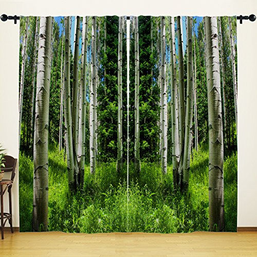 YOUHOME Window Curtain for Living Room,Nature Brich Tree Curtain Home Decorations for Bedroom Kids Room 2 Panels Set,54x84inch,Green,White (Tree Brich)
