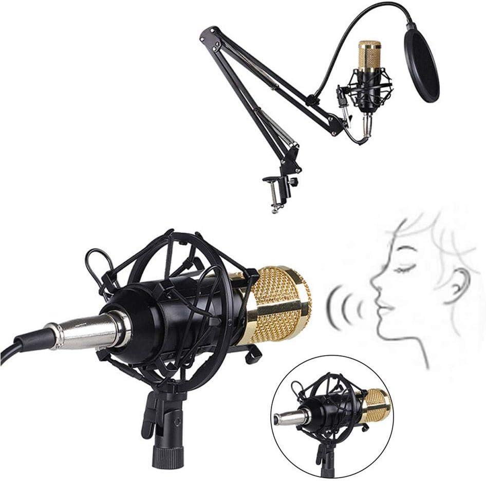 DAETNG Kit de micrófono de Condensador, micrófono de podio cardioide, Chip de Sonido Profesional, Plug Play para Podcast, Juego, Youtube, PC Karaoke, transmisión en Vivo, Voz en Off,Yellow: Amazon.es: Hogar
