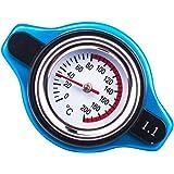 1.1 Bar Thermostatic Radiator Cap 16 PSI Pressure Rating with Temperature Gauge