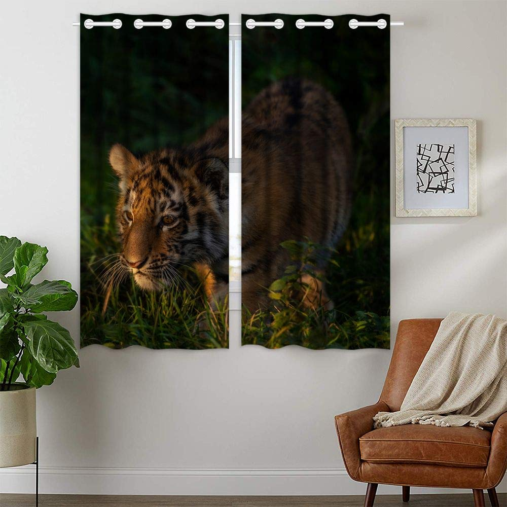 HommomH 42 x 63 Inch Tiger Cub Curtains (2 Panel) Grommet Top Blackout Shade Room Looking for Food in The Forest by HommomH