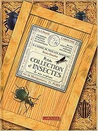 Petite collection d'insectes de nos régions par Sonia Dourlot