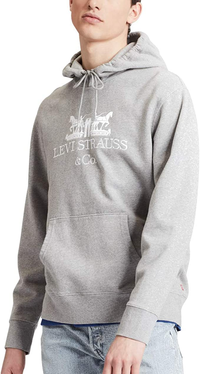 Levi's Men's Graphic Text Pullover Hoodie, Grey at Amazon