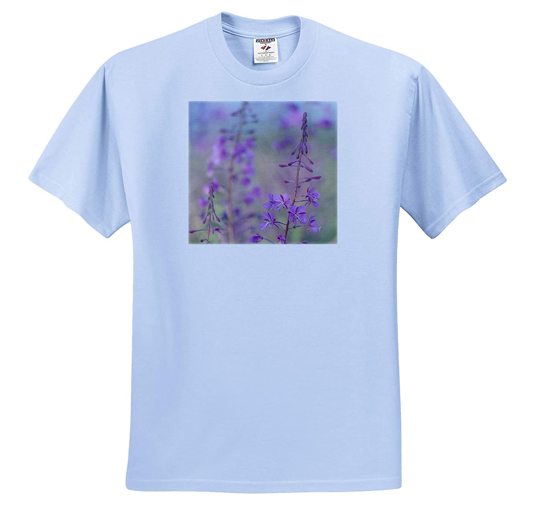 - Adult T-Shirt XL Flowers Yukon ts/_313053 3dRose Danita Delimont Canada Fireweed Plant in Bloom