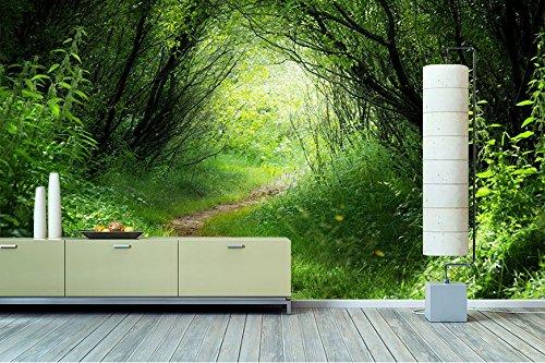 Fototapete waldweg  WandbilderXXL® Vlies Fototapete Waldweg 240x160cm - hochwertige ...