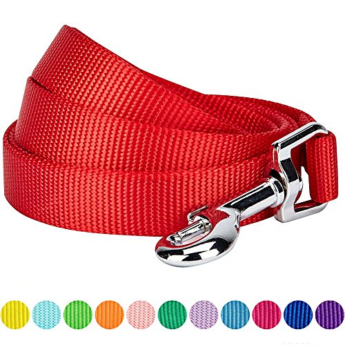 Blueberry Pet 12 Colors Durable Classic Dog Leash 5 ft x 5/8, Rouge Red, Small, Basic Nylon Leashes for Dogs (Dog Red Collar Nylon)