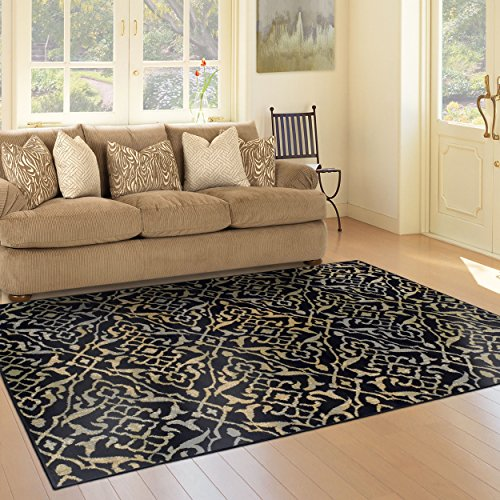 Superior 8mm Pile Height with Jute Backing, Vintage Distressed Geometric Pattern, Fashionable and Affordable Woven Rugs, 4 x 6 Rug, Black