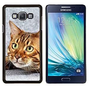 Gato de Bengala Casa gatito felino Mascota- Metal de aluminio y de plástico duro Caja del teléfono - Negro - Samsung Galaxy A7 / SM-A700