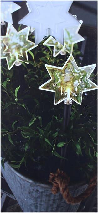 Tcm Tchibo Led Gartenstecker 5 Leuchtstabe Sterne Amazon De Garten