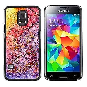 rígido protector delgado Shell Prima Delgada Casa Carcasa Funda Case Bandera Cover Armor para Samsung Galaxy S5 Mini, SM-G800, NOT S5 REGULAR! /Colors Tree Branches Leaves/ STRONG