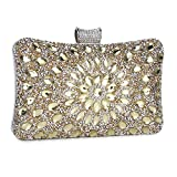 Clocolor Evening Bags and Clutches for Women Crystal Clutch Beaded Rhinestone Purse Wedding Party Handbag(Golden)
