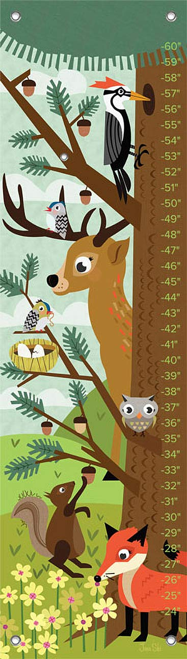 Oopsy Daisy Growth Charts Woodland Creatures by Jenn Ski, 12 by 42-Inch by Oopsy Daisy