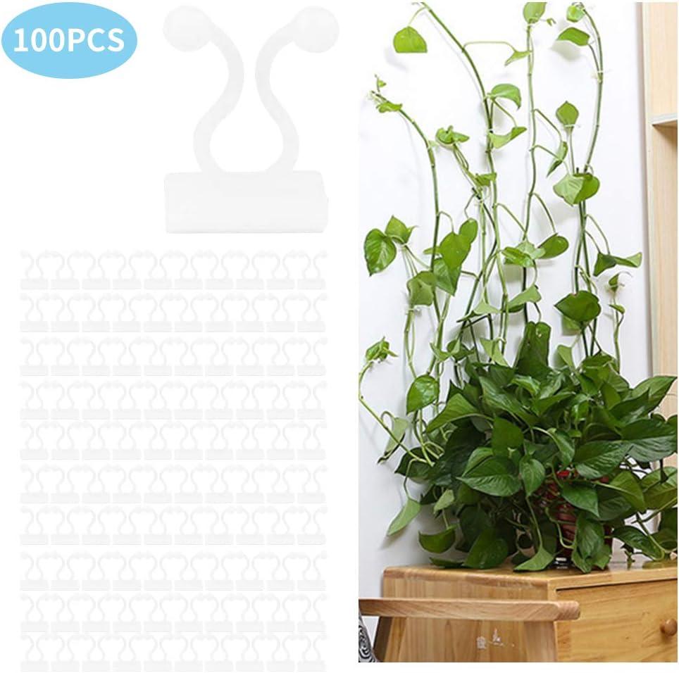 color blanco CHENGDE 100 clips de pared para plantas trepadoras y cables autoadhesivos