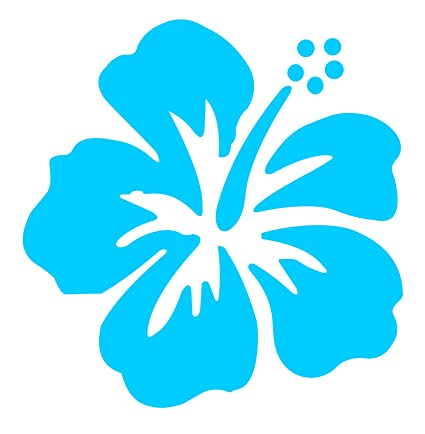 Amazoncom Dixies Decals Hibiscus Flowers 5 Light Blue Automotive