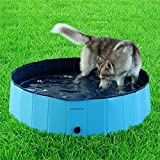 Namsan Foldable Dog Pool Bathing Tub for Large Dogs, Sky Blue