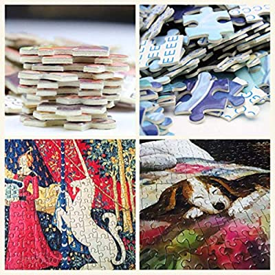 Jigsaw Puzzle for Adults 1000 Piece, Tulip,Picture Decor Home Decor Toys Fun Games Wooden Educational Toy for Kids and Adults: Home Improvement