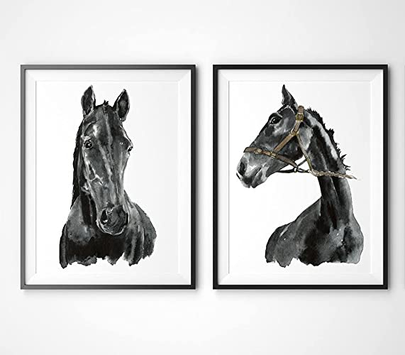 Horse Art #A003   Set Of 2 Art Prints(8x10).Black And
