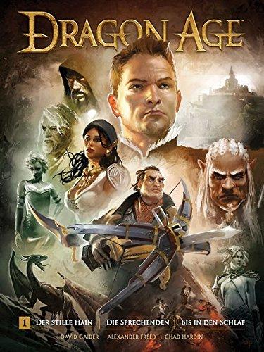 Dragon Age 1 Taschenbuch – 17. November 2014 David Gaider Alexander Freed Chad Hardin Jacqueline Stumpf