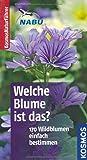 Welche Blume ist das?: 170 Blumen einfach bestimmen